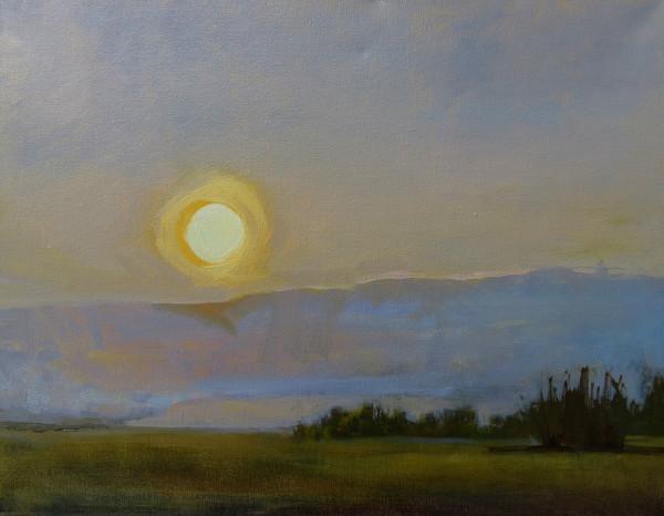 Yellow-Sun1200