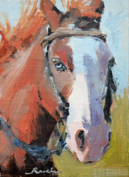 blue-eyes-rasche-2000